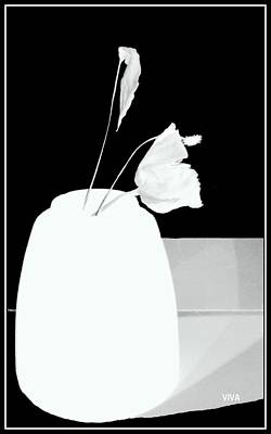 Photograph - The First Rose  - Remembering - Silhouette by VIVA Anderson