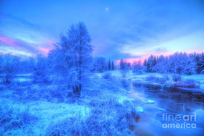 Royalty-Free and Rights-Managed Images - The first snow 2 by Veikko Suikkanen