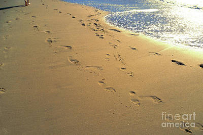 Photograph - The Footprints On The Sand by Marina Usmanskaya