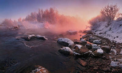 Photograph - The Fragment Of Frosty Morning by Vlad Sokolovsky