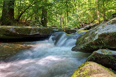 Photograph - The Gentle Stream Fall by Mark Dodd
