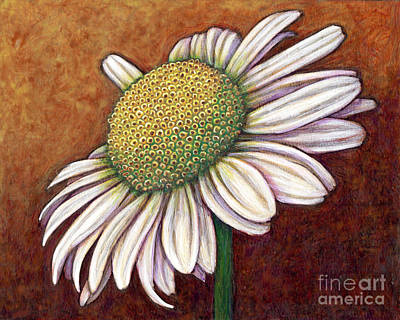 Painting - The Gentleman Daisy by Amy E Fraser
