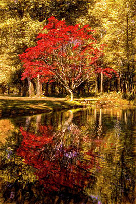 Photograph - The Golds And Reds Of Autumn by Debra and Dave Vanderlaan