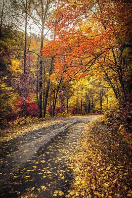Photograph - The Golds Of Autumn by Debra and Dave Vanderlaan