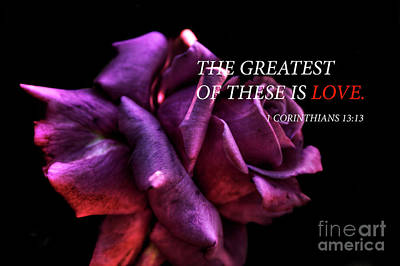 Photograph - The Greatest Of These Is Love by Tony Baca
