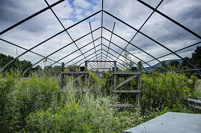 Photograph - The Greenhouse by Dan Poirier