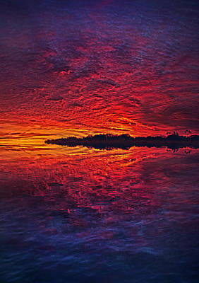 Art Print featuring the photograph The Last Chapter by Phil Koch
