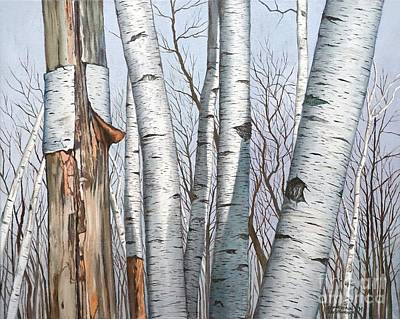 Painting - The Life Of The Wild Birch Trees by Christopher Shellhammer