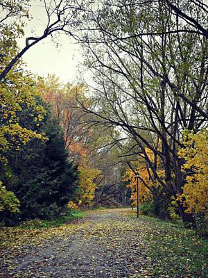 Photograph - The Lonely Path by Cyryn Fyrcyd