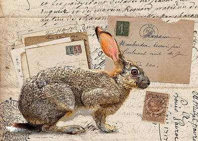 Digital Art - The Mad Hare by Terry Kirkland Cook