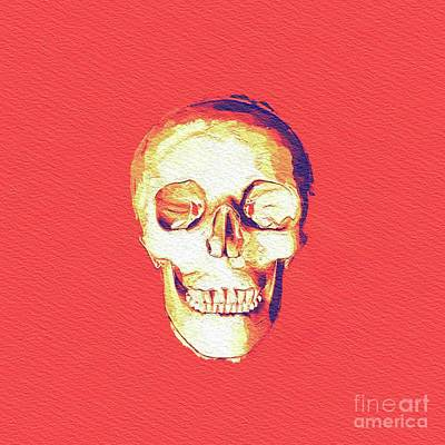 Royalty-Free and Rights-Managed Images - The Magic Skull by Esoterica Art Agency