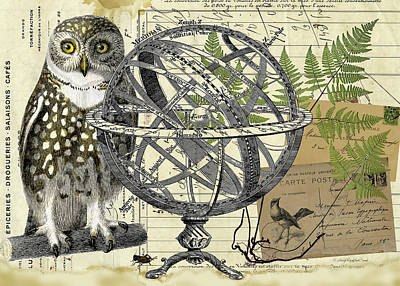 Digital Art - The Meridian Owl by Terry Kirkland Cook