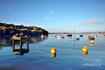 Photograph - The Mylor Dolphin by Terri Waters