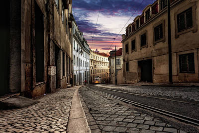 Photograph - The One by Jorge Maia