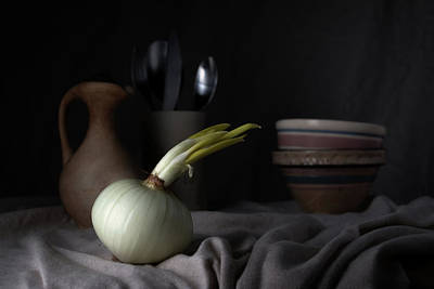 Onion Wall Art - Photograph - The Onion by Tom Mc Nemar