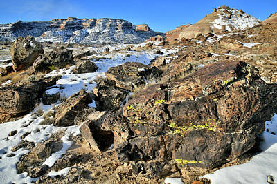 Photograph - The Ornate Boulders Of Ruby Mountain by Ray Mathis
