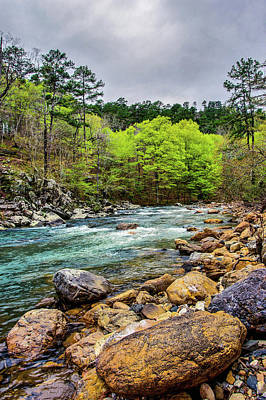 Photograph - The Ouachita River by Kyle Findley