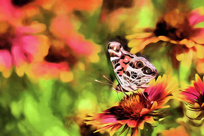 Digital Art - The Painted Lady by JC Findley
