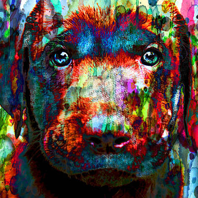 Painting - The Painted Puppy Huge 48x48 Canvas Or Paper by Robert R Splashy Art Abstract Paintings