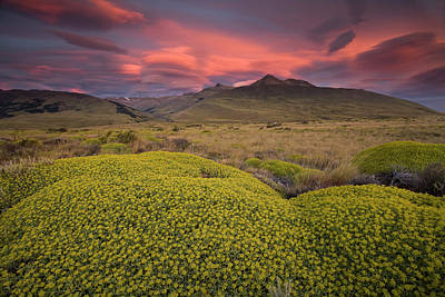 Photograph - The Patagonian Landscape And A Large by Mint Images - Art Wolfe