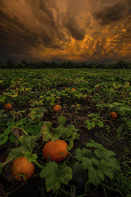 Photograph - The Patch by Aaron J Groen