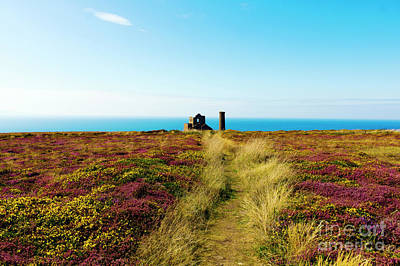 Photograph - The Path To Wheal Coates by Terri Waters