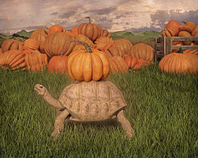Digital Art Rights Managed Images - The Perfect Pumpkin Royalty-Free Image by Betsy Knapp