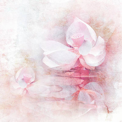 Photograph - The Pink Lotus by Jai Johnson