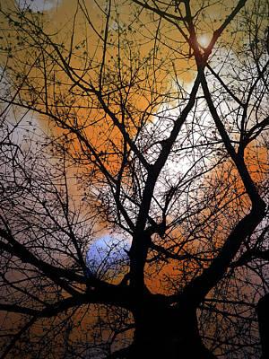 Photograph - The Prayer by Tara Turner