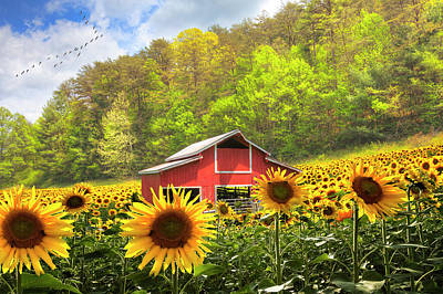 Photograph - The Red Barn In Sunflowers by Debra and Dave Vanderlaan