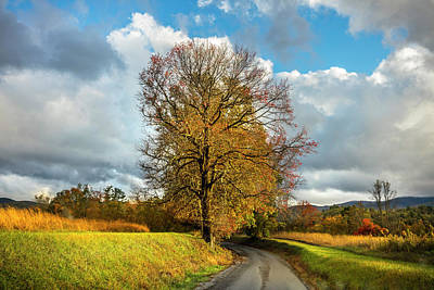 Photograph - The Road To Autumn by Debra and Dave Vanderlaan