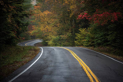 Photograph - The Road To Friends Lake by Brad Wenskoski