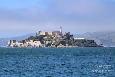 Easter Bunny - The Rock - Alcatraz by Diann Fisher