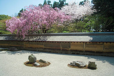 Photograph - The Rock Garden And Drooping Cherry by Akira Kaede