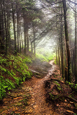 Photograph - The Rocky Appalachian Trail by Debra and Dave Vanderlaan