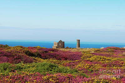 Photograph - The Ruins Of Wheal Coates by Terri Waters