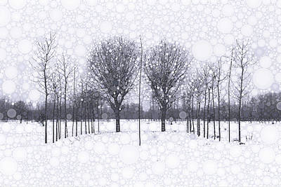 Photograph - The Scent Of Snow by Susan Maxwell Schmidt