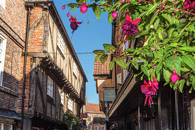 Photograph - The Shambles, York by David Ross