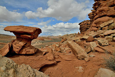 Photograph - The Shapes Of San Rafael Desert In Utah by Ray Mathis
