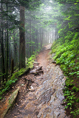 Photograph - The Smoky Mountain Appalachian Trail by Debra and Dave Vanderlaan