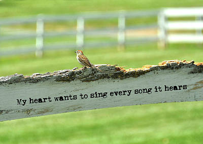 Photograph - The Sound Of Music Quote by JAMART Photography