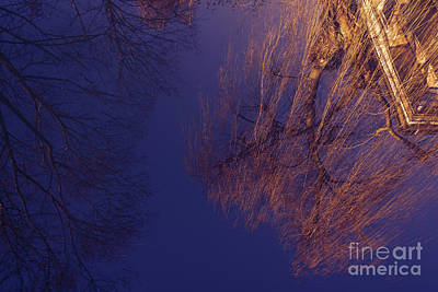 Photograph - The Spring Reflections On The Canal by Marina Usmanskaya