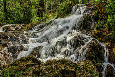 Photograph - The Springs In It's Summer Green, Big Hill Springs Provincial Re by David Butler