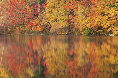 Photograph - The Stillness Of Autumn by Karol Livote