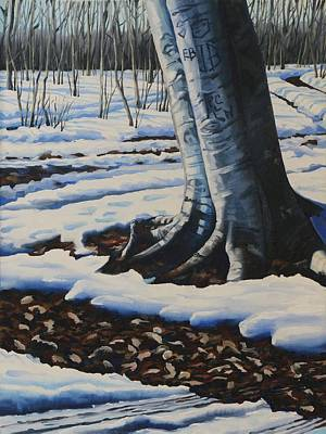 Painting - The Sugarbush Beech by Phil Chadwick