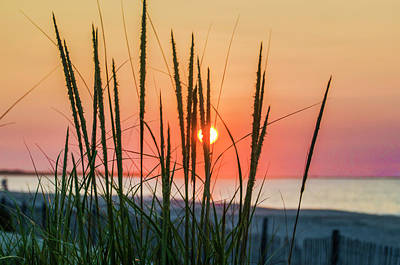 Photograph - The Sunrise And The Tall Grass At Wildwood New Jersey by Bill Cannon