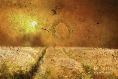 Photograph - The Sun's Harvest by Marcia Lee Jones