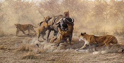 Painting - The Take Down - Lions Attacking Cape Buffalo by Alan M Hunt