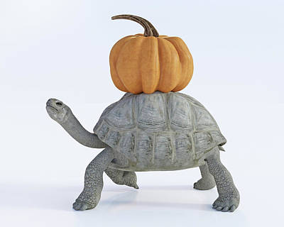 Digital Art Rights Managed Images - The Tortoise and the Pumpkin Royalty-Free Image by Betsy Knapp