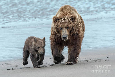 Photograph - The Two Of Us-lake Clark, Ak by Sandra Bronstein